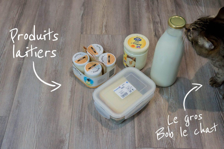Les courses du Leclerc, produits laitiers
